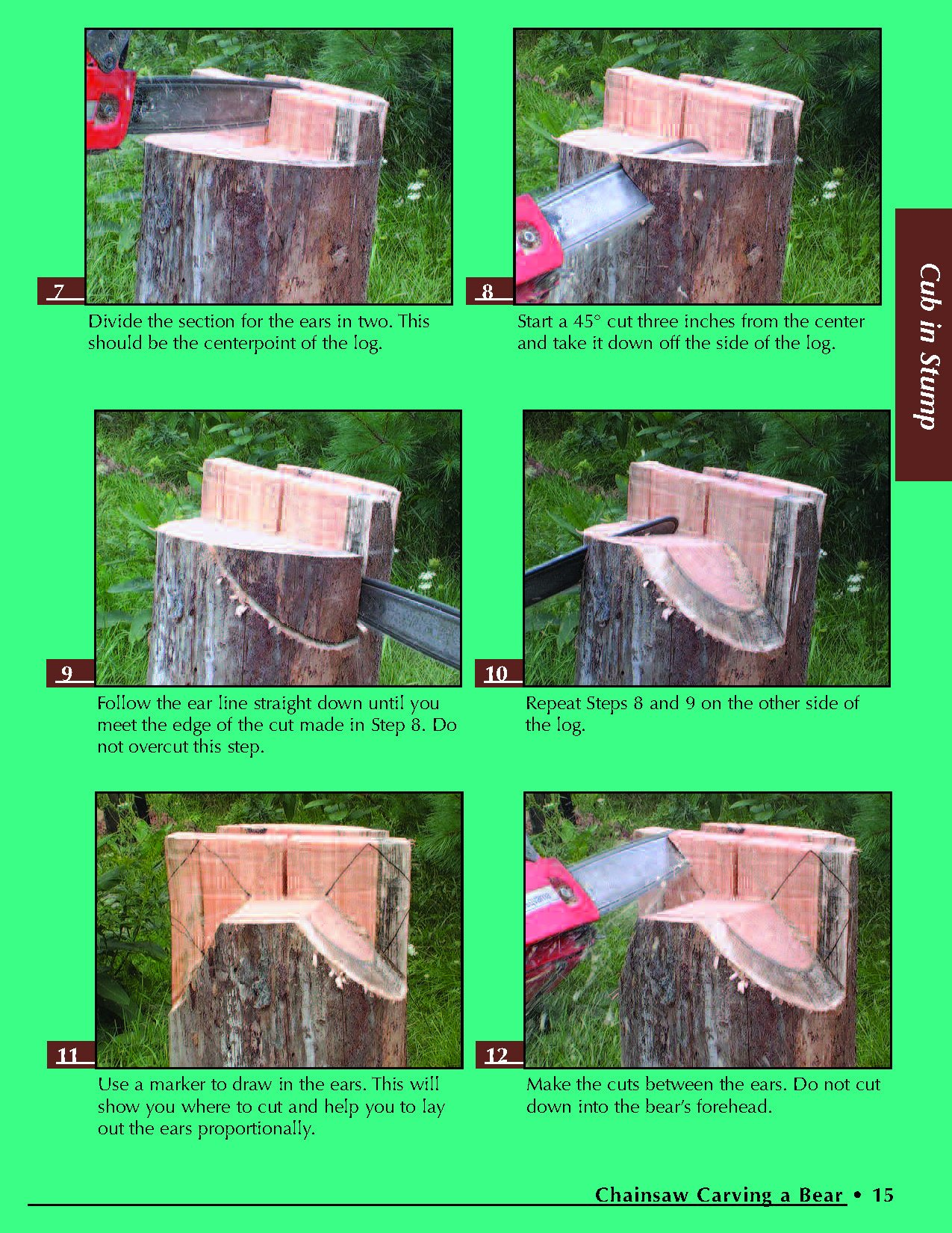 Chainsaw Carving a Bear: A Complete Step-By-Step Guide by Fox Chapel Publishing (Image #3)