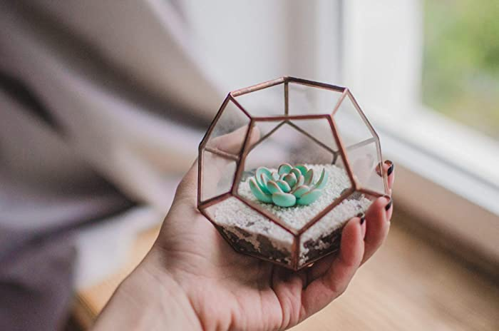 Amazon Com Mini Succulent Terrarium Dodecahedron Christmas Gift For
