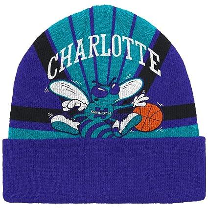 66f2ff24374fd1 Amazon.com : Charlotte Hornets Mitchell & Ness