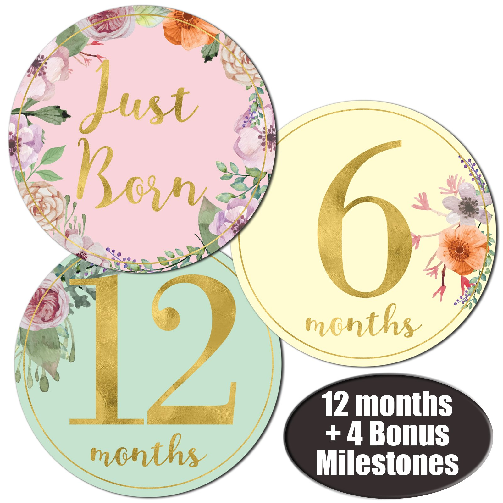 Newborn Baby Girl Gold Floral Monthly Stickers - Great Shower Registry Gift or Scrapbook Photo Keepsake by Nora's Nursery