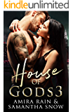 House Of Gods 3: The Vision (The Gods Of New York Series)