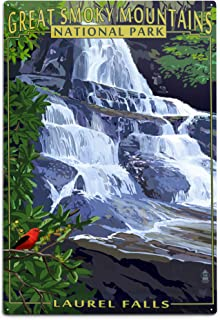 product image for Lantern Press Great Smoky Mountains National Park, Tennessee, Laurel Falls (12x18 Aluminum Wall Sign, Wall Decor Ready to Hang)