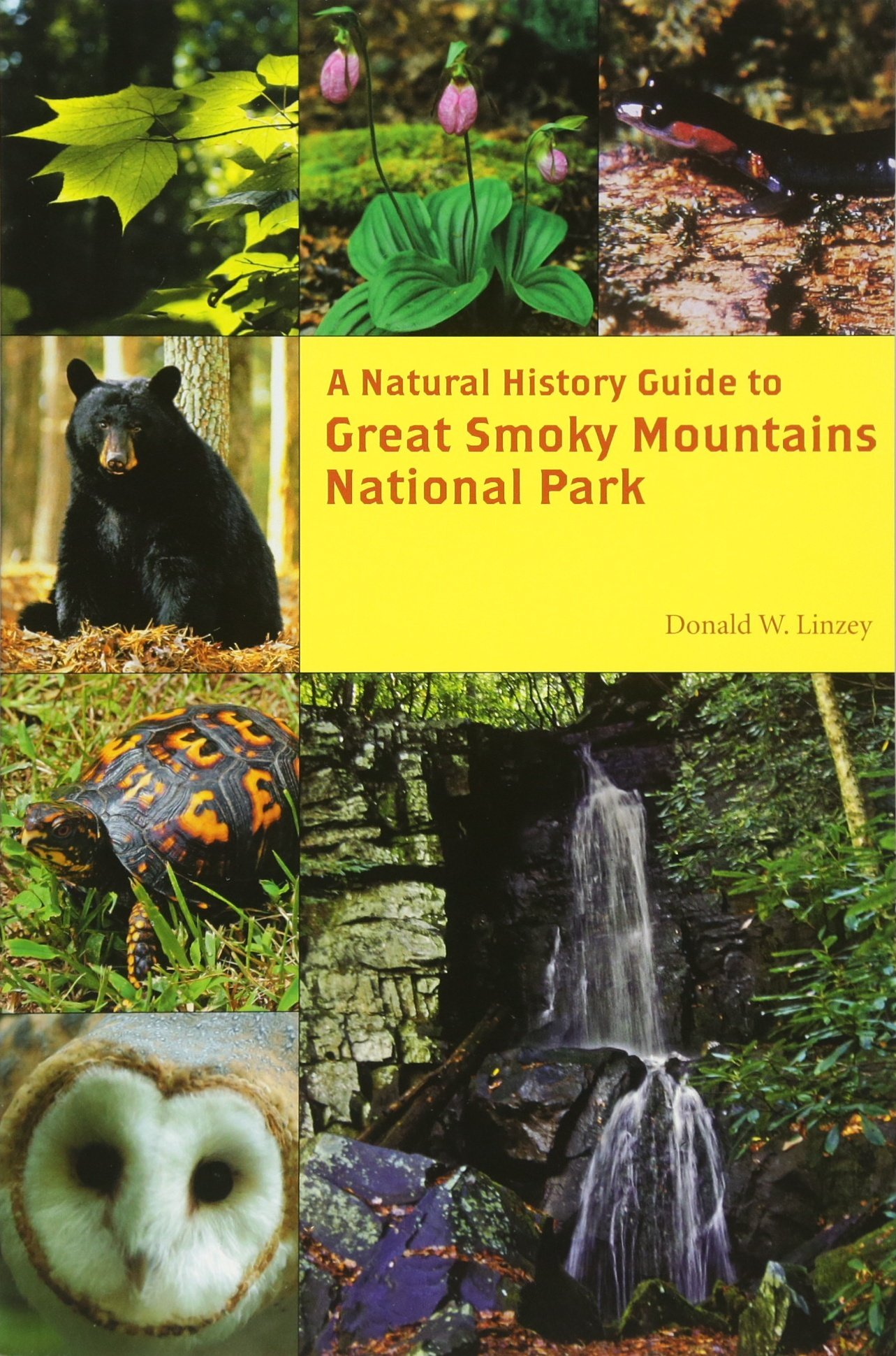 A Natural History Guide: Great Smoky Mountains National Park ebook