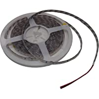 3528 SMD 300 LED Flexible Light Strip Blanco