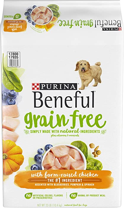 The Best Healthy No Grain Dog Food