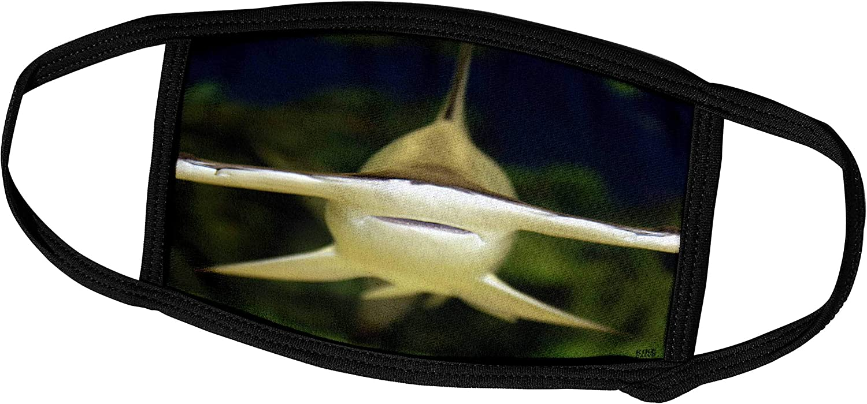 3dRose Kike Calvo Underwater Life - Scalloped Hammerhead Shark, Sphyrna lewini viviparous - Face Masks (fm_45517_2)