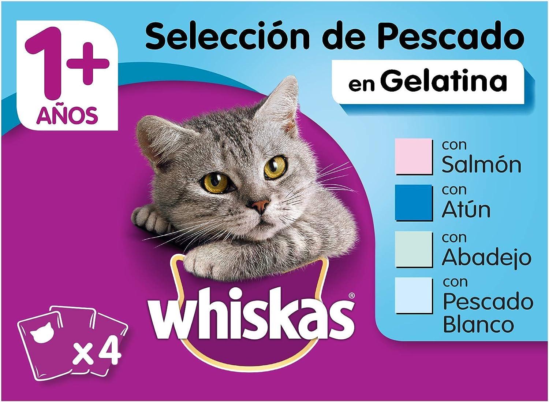 Whiskas Comida Húmeda para Gatos Selección Pescados en Gelatina, Multipack (Pack de 13 x 4 bolsitas x 100g)