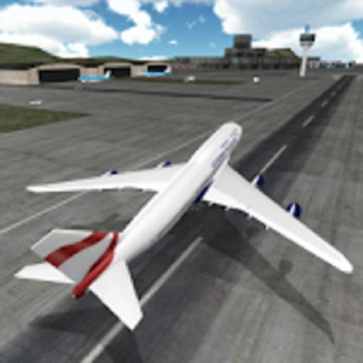 (Plane Flight Simulation)