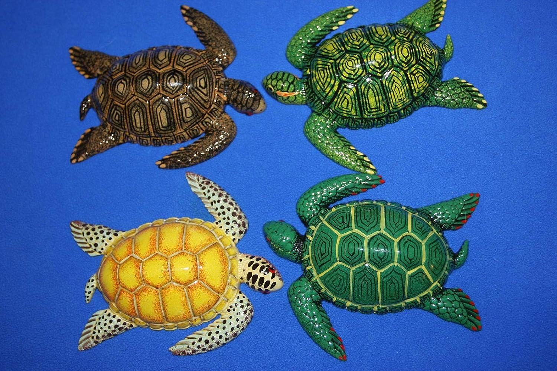 - Amazon.com: Salty Pelican Lifelike Sea Turtle Wall Decor 3-D