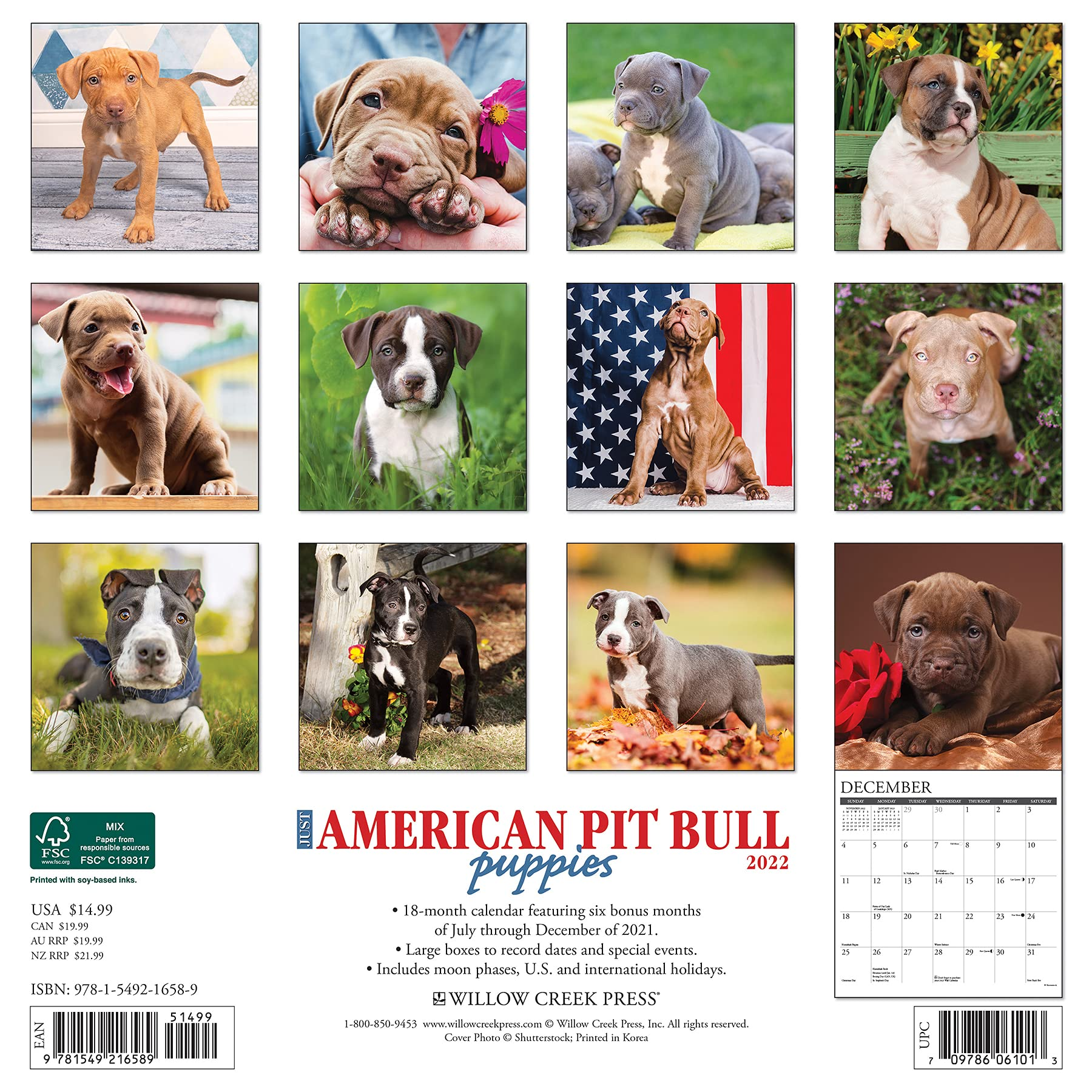 american pit bull puppies 2022 calendar