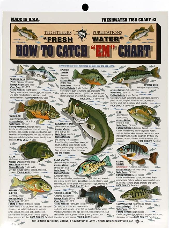 """Tightline Tightlines Publications #1 SALTWATER FISH How to Catch /""""EM/"""" Chart"""