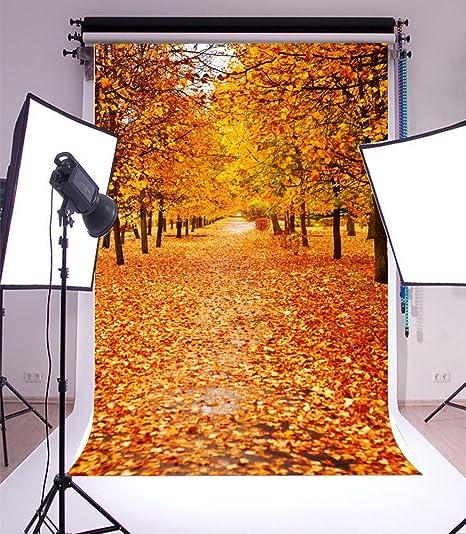 Aaloolaa 1 5 X 2 2 M Vinyl Fotografie Hintergrund Kamera