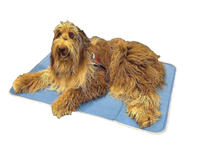 Amazon.com : The Green Pet Shop Self Cooling Pet Pad, Large : Pet ...