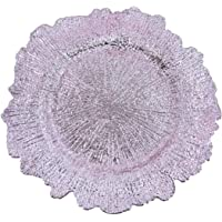 USA Party Flower Elegant Plastic Reef Charger Plate, Set of 6
