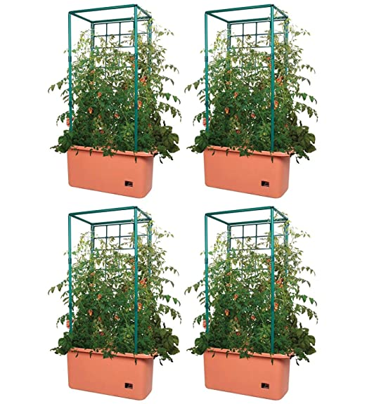 MRT SUPPLY (4 10 galones Auto riego Tomate Trellis Jardín Sistemas ...