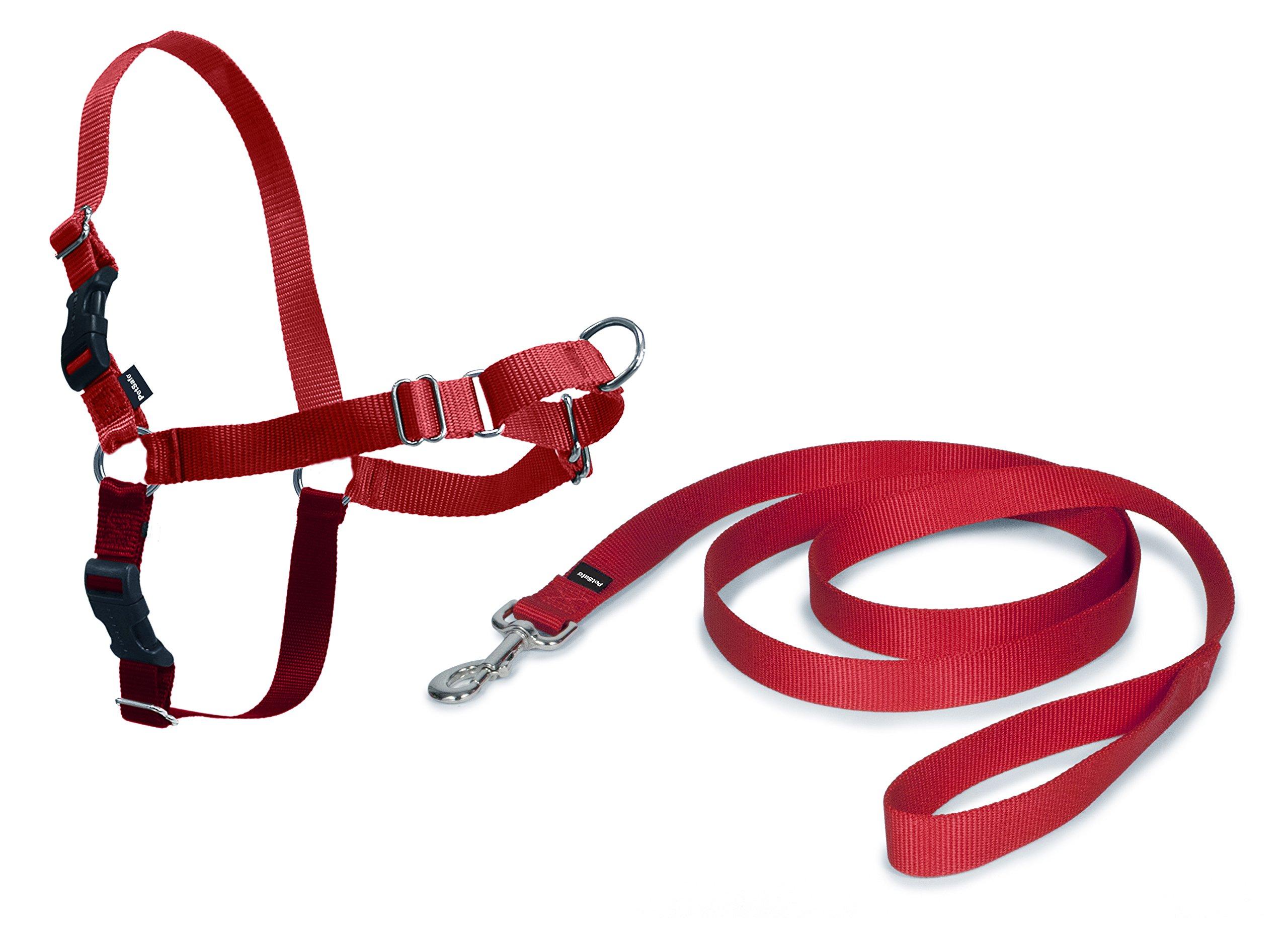 PetSafe Harnais pour Chien Moyen Easy Walk (M) - Harnais Ajustable et Anti-Traction - 4 points de Réglage pour un Confort Maximal - Rouge product image
