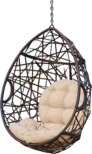 Christopher Knight Home Cayuse Indoor/Outdoor Wicker Tear Drop Hanging Chair