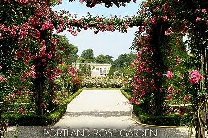 Amazon Com Portland Oregon Rose Garden Trellis 51034 24x36