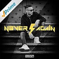 Never Again [Explicit]