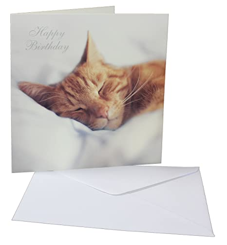 Tailz Gifts Ginger Tabby Cat Themed Blank Inside Happy Birthday Card For That Special Occasion Amazoncouk Kitchen Home
