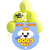 The Little Dog's Balls - 6 Small Dog Tennis Balls, Premium Mini Dog Toy for Puppies & Small Dogs, For Exercise, Play, Training & Fetch. the King Kong of Little Dog Balls
