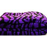 Violet Zebra Super Soft Coral Fleece Blanket Queen 92x76 by WPM