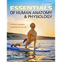 Essentials of Human Anatomy & Physiology (2-downloads)