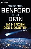 Im Herzen des Kometen: Roman
