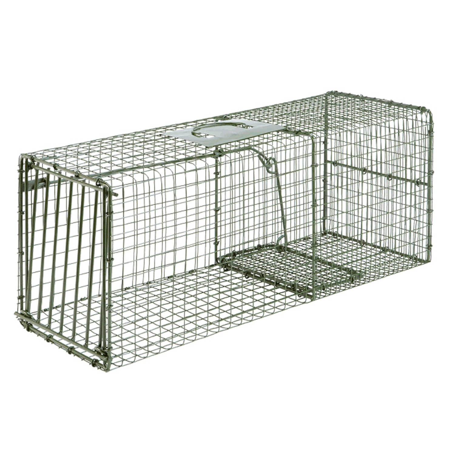 Duke Traps Heavy Duty Large Cage Trap by Duke