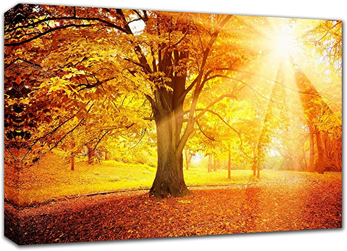Amazon Com Canvas Wall Art Sunshine Tree Painting 12x16 Inch Green And Yellow Fall Jungle Forest Giclee Canvas Print Home Decoration For Bedroom Easy To Hang With Framed Wall Pictures For Bathroom
