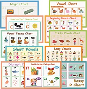 11Pcs/Set English Phonics Language Arts Skills Charts for Kids l Bulletin Board Set and Classroom Decorations Organization Learning Posters for Kindergarten l Word family wall posters, 8.3''x 11.7''