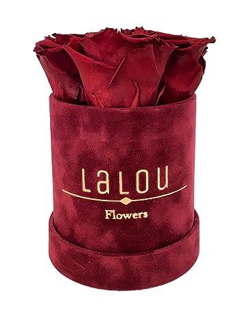 Rosenboxflowerbox Geburtstagsgeschenkblumen Schenkenechte Rosen Die Bis Zu 3 Jahren Blühenlalou Flowerbox Mit Grußkarte Rot