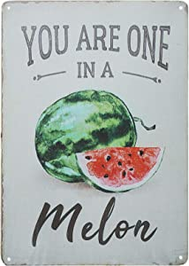 TISOSO Funny Fruit You are One in a Melon Watermelon Retro Vintage Tin Bar Restaurant Kitchen Home Decor Wall Art Distressed 8X12Inch