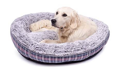 Petface - Cama para Perro con Estampado de Donut: Amazon.es: Productos para mascotas