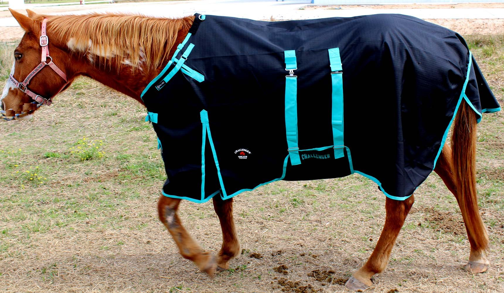CHALLENGER 76'' 1200D Turnout Rain Horse Sheet Light Winter Blanket 356B