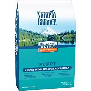 Natural Balance Whole Body Health Dry Puppy Formula