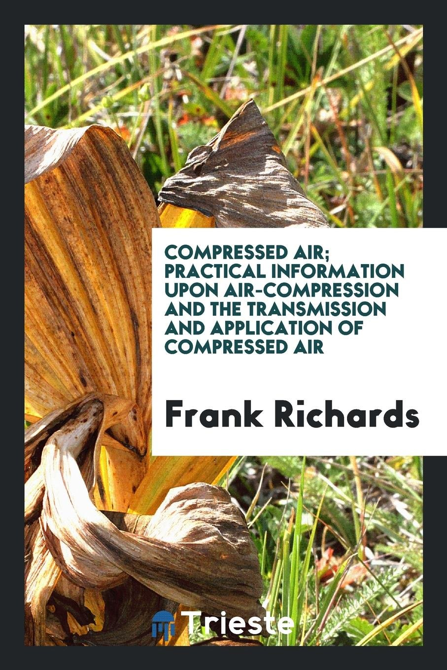 Read Online Compressed Air; Practical Information upon Air-Compression and the Transmission and Application of Compressed Air pdf