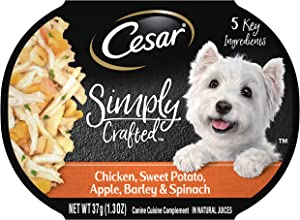 CESAR SIMPLY CRAFTED Wet Dog Food, 1.3 oz. Pack of 10