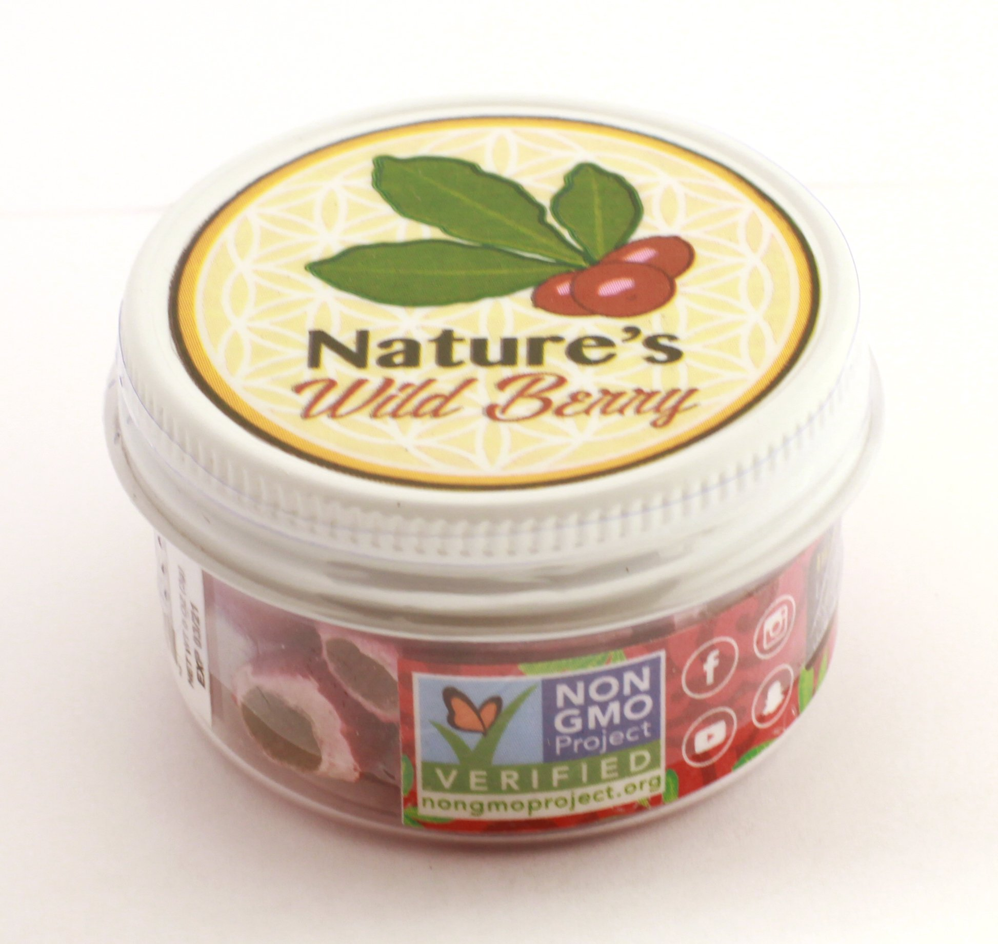Nature's Wild Berry - The Flavor Enhancing Wildberry | Travel Jar | 30 Servings | Best Way to TAKE Your Berries ON THE GO | $1~15-20 mins