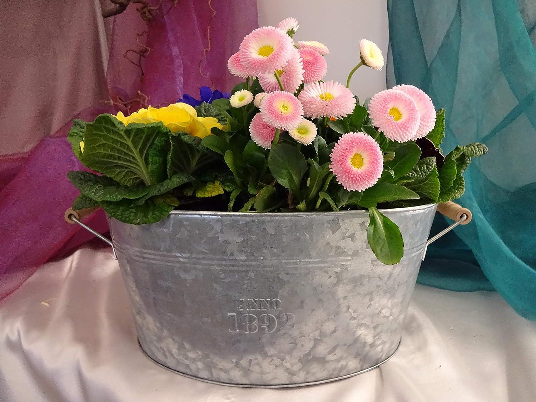 N A Zinkwanne Flowers Gr/ö/ße M Landhausstil Wanne zum Bepflanzen Pflanzk/übel Pflanztopf