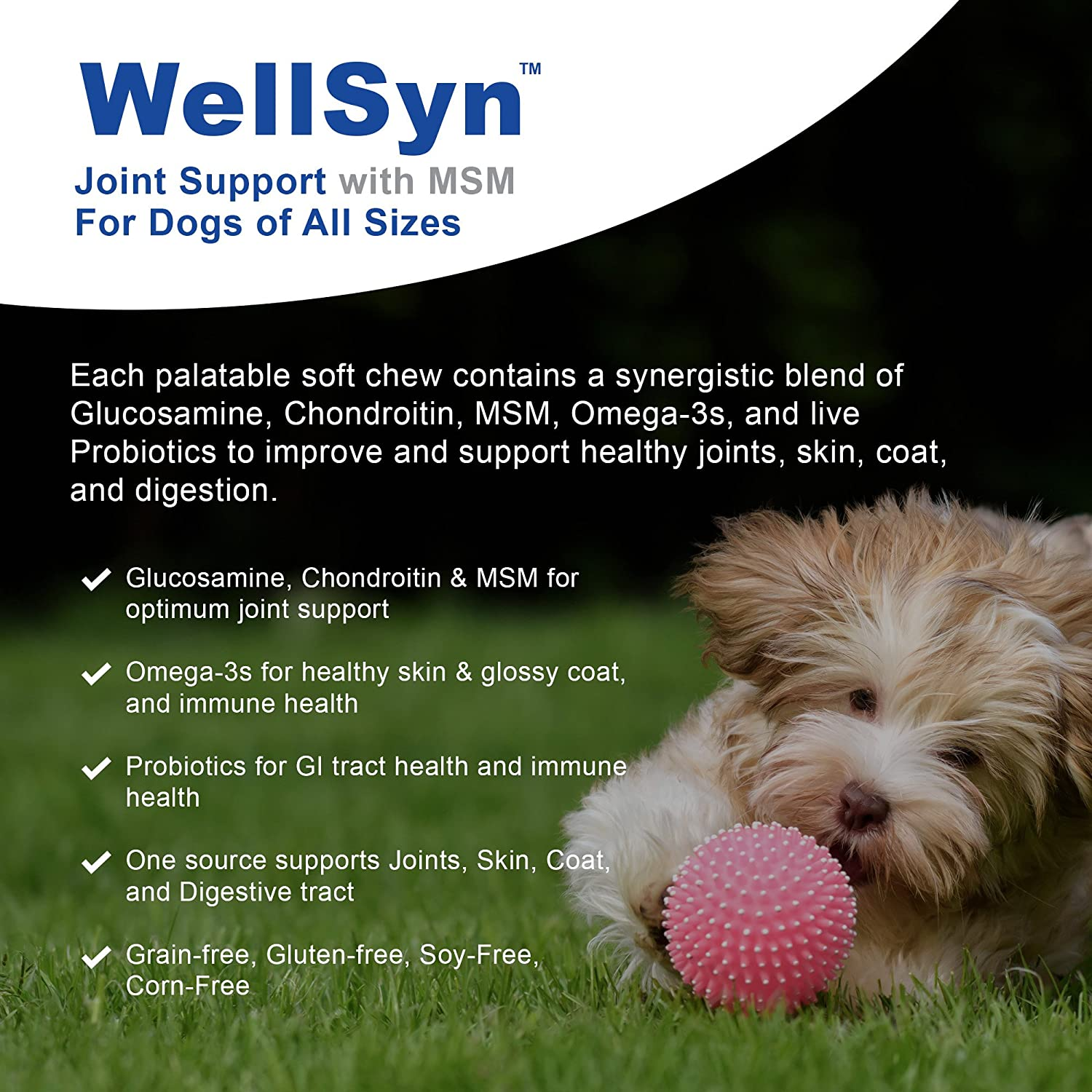 VetWELL Glucosamine Joint Supplements for Dogs - with Chondroitin, MSM,  Omega 3s and Probiotics for Mobility, Healthy Skin, Shiny Coat, Digestive  and
