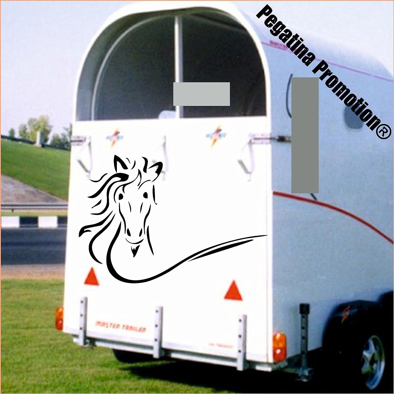 Pferdekopf Modell 11 Aufkleber Anhänger Pferd Anhänger ca. 80x30 Pegatina Promotion ®