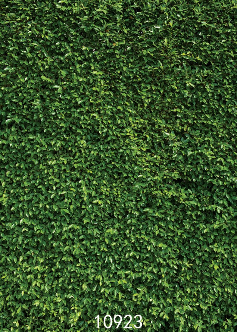 SJOLOON 5X7ft Spring Background Natural Green Lawn Party Photography Backdrop Newborn Baby Lover Wedding Photo Studio Props 10923 by SJOLOON (Image #2)