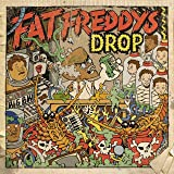 Fat freddy's Drop: Dr. Boondigga & The Big BW