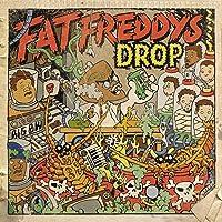 DR BOONDIGGA & THE BIG BW (LP) - FAT FREDDY'S DROP