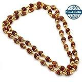 iJevar Gold Plated Rudraksha Chain Necklace For Men And Women