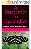 A Butterfly in December: Megan Johnstone-Fairbairn (The Accidental Expat Book 1)