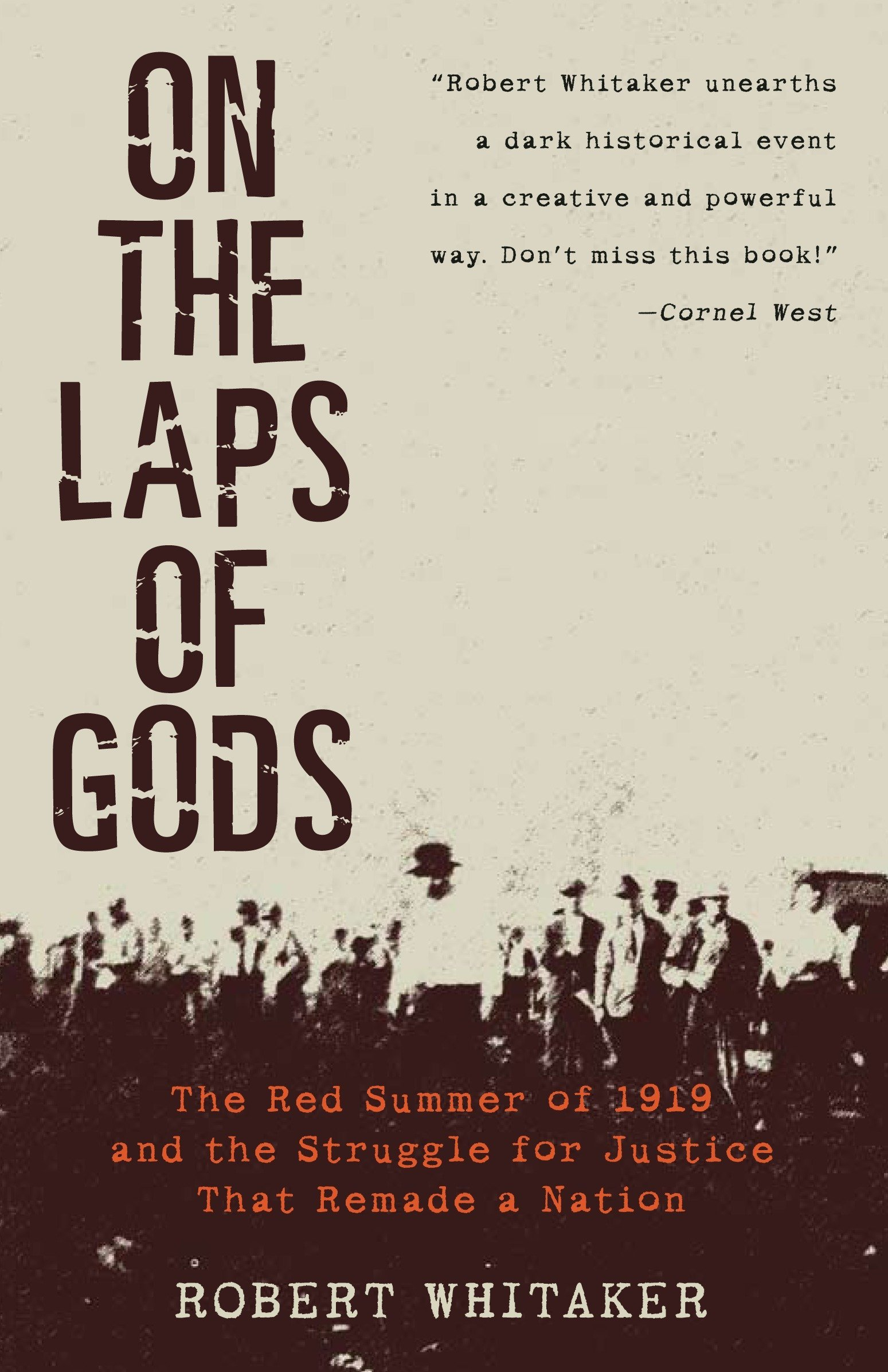 On the Laps of Gods: The Red Summer of 1919 and the Struggle for ...