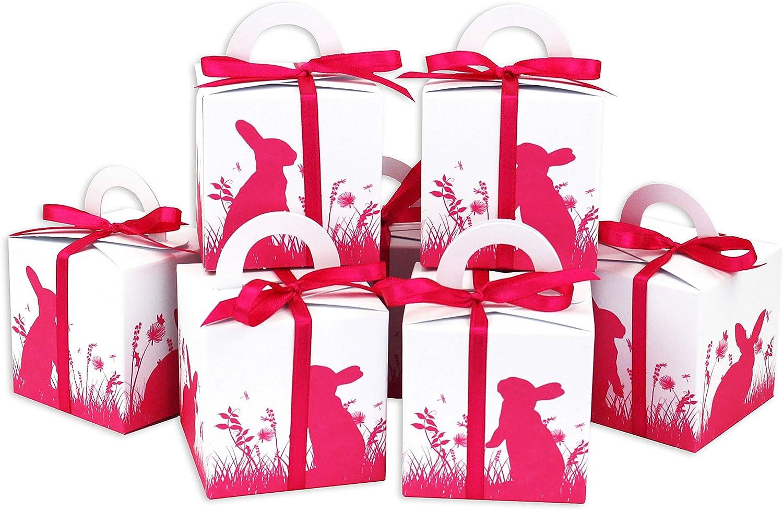Papierdrachen Cajitas de conejitos de Pascua Impresos Cajitas de Regalo en Blanco para Pascua - Envoltorio Elegante de Regalo - Diseño 1: Amazon.es: Hogar