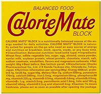 カロリーメイト ブロックチョコレート味 4本入×30個